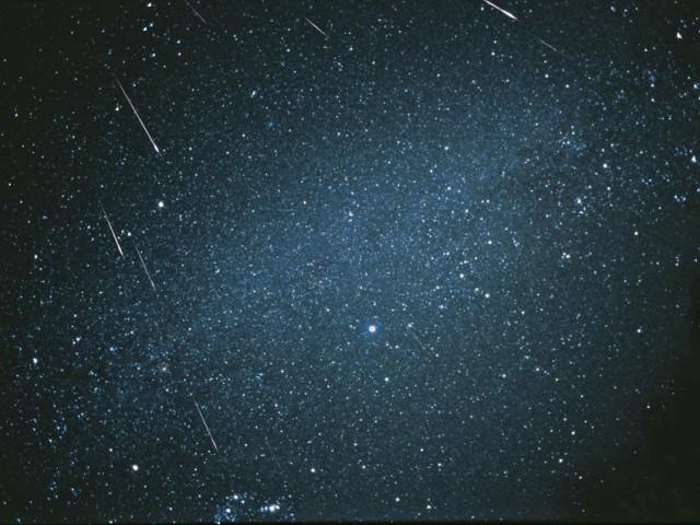 2001 Leonid Meteors (3)