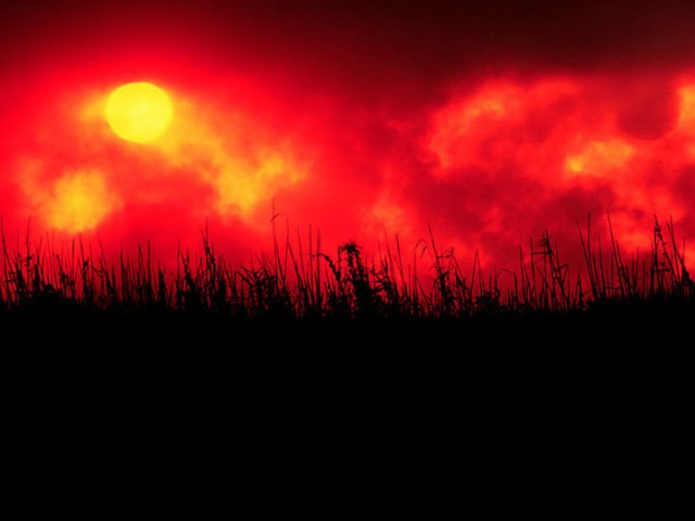 Everglades Wildfire at Sunset