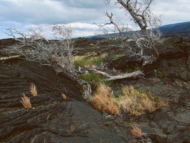 Volcanic Landscape – Kilauea Volcano