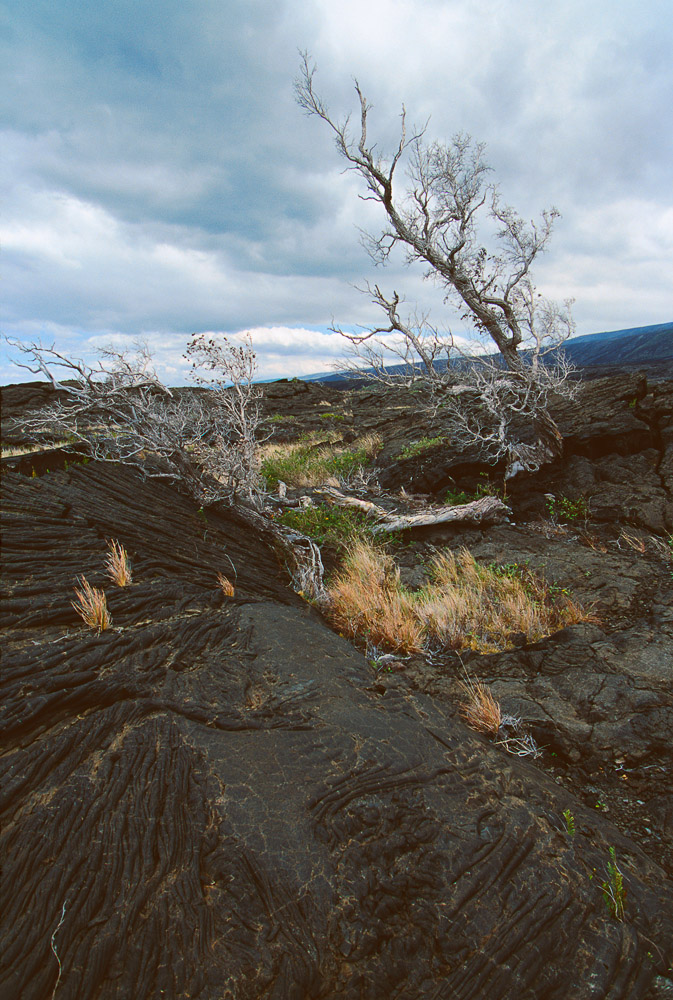Hawaii_-_Kilauea_Scenic1