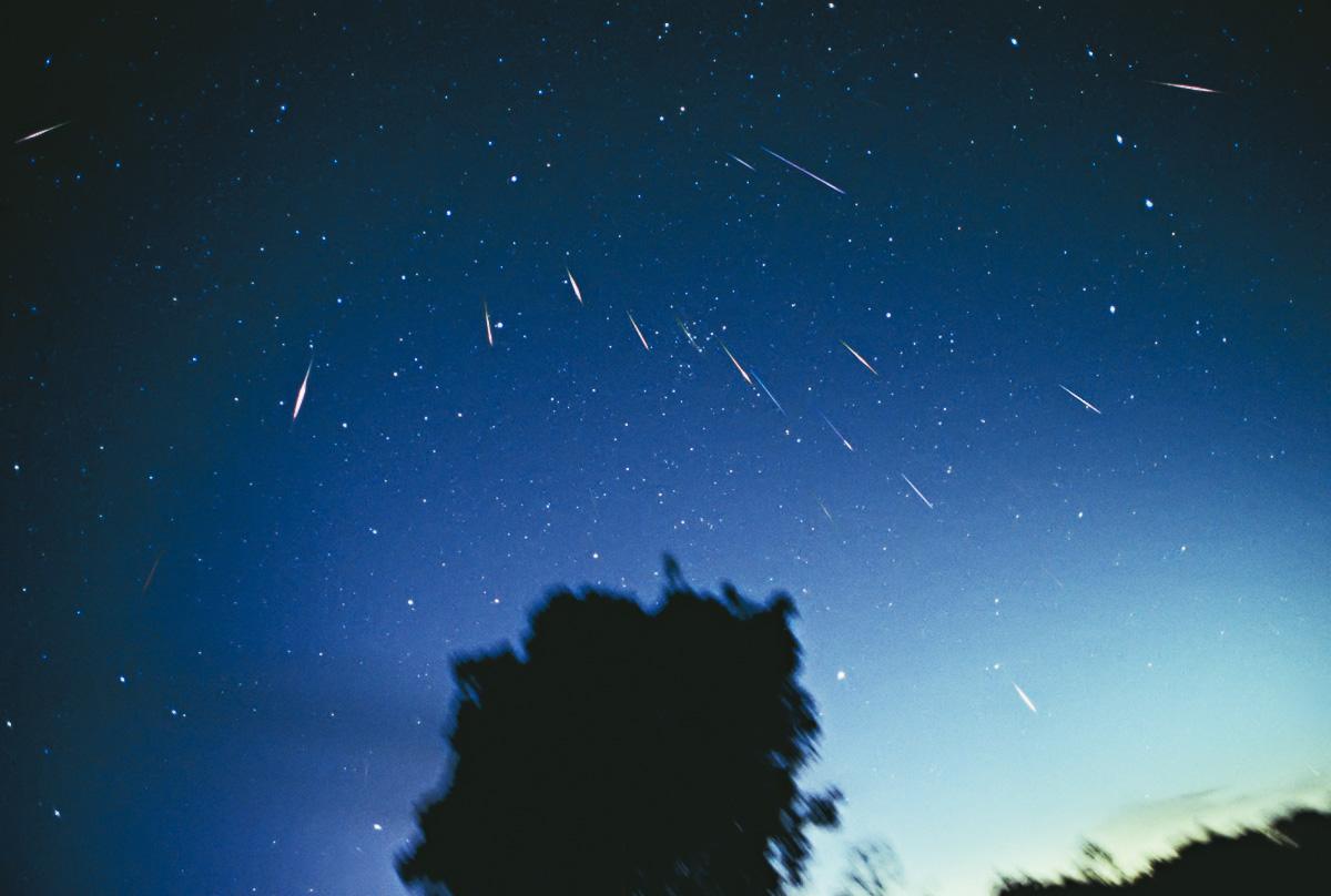 Leonid_Meteors